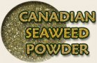seaweed for canine parasites