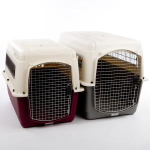 dog crate for securing dog afraid of loud noises