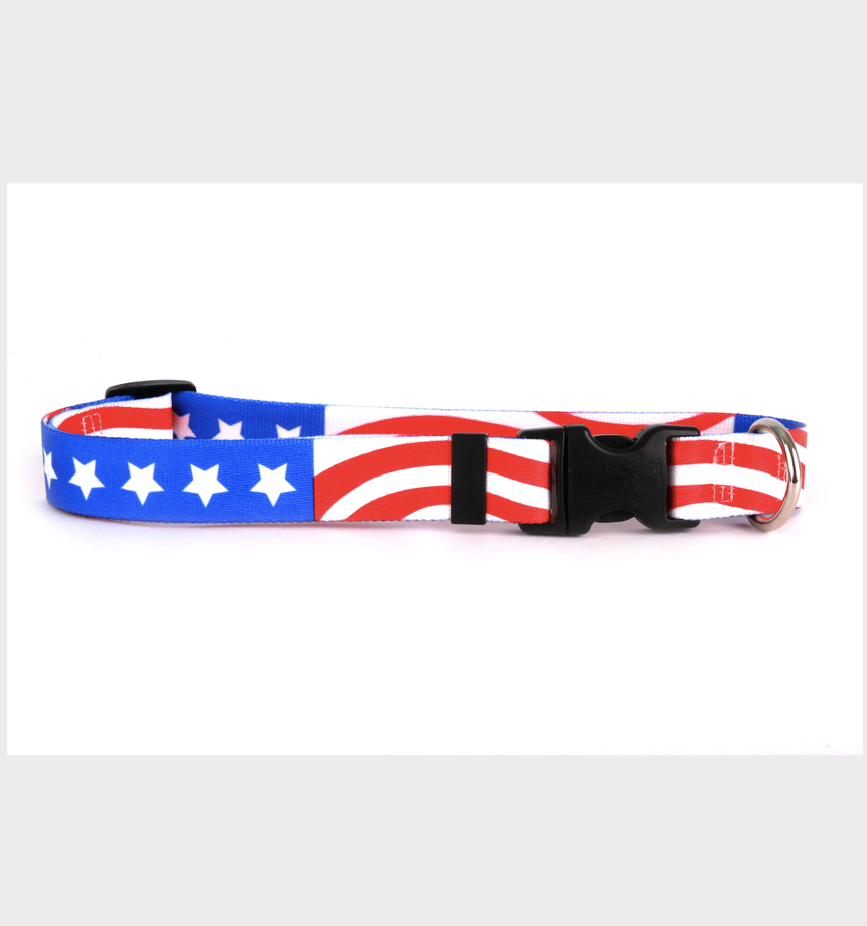 Yellow Dog Design Americana Collar