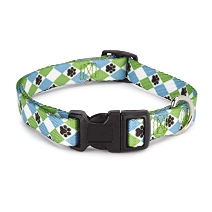 Casual Canine Blue Argyle collar