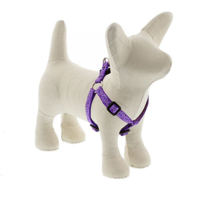 Lupine Jelly Roll Harness