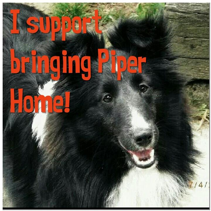 Bring Piper Home