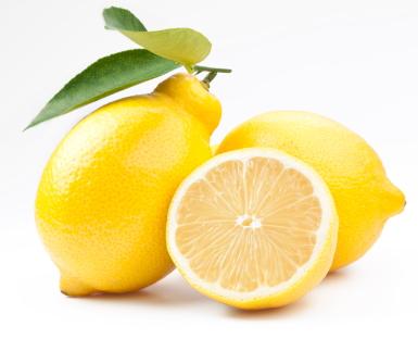 lemon for kennel cough