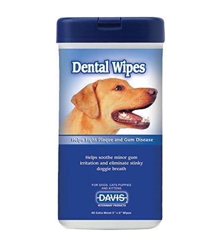 Davis Dental Wipes