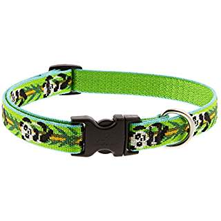 Lupine Panda Land Collar & Leash