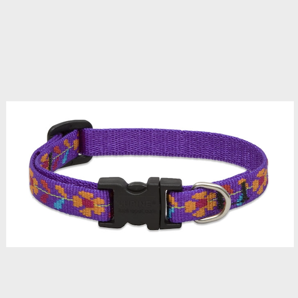Lupine Spring Fling Collar & Leash
