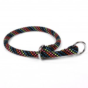 Yellow Dog Design Multicolor Braided Slip Collar & Leash