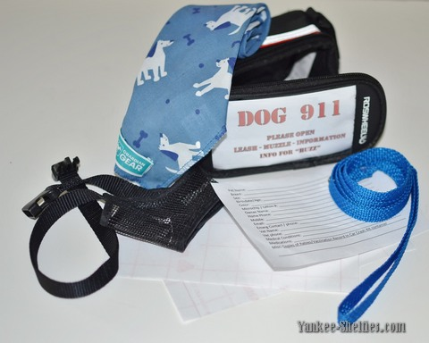 Dog emergency kit