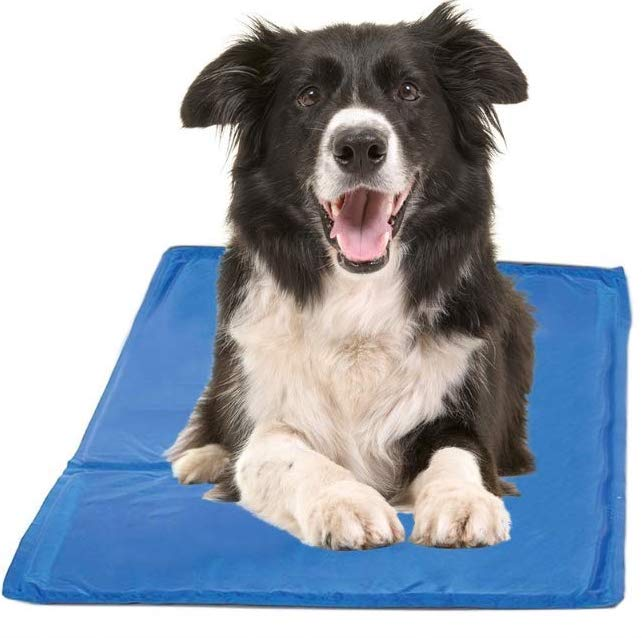 Chillz Large Cooling Pad
