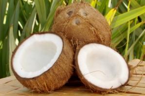 coconut oil for coccidia & giardia