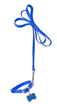 dog collar and leash