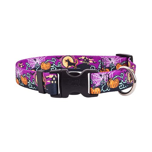 Yellow Dog Design Scary Night Collar, Harness & Leash