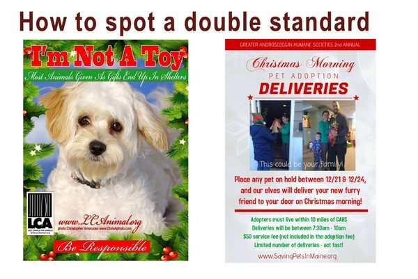 Double Standard for rescues vs. breeders