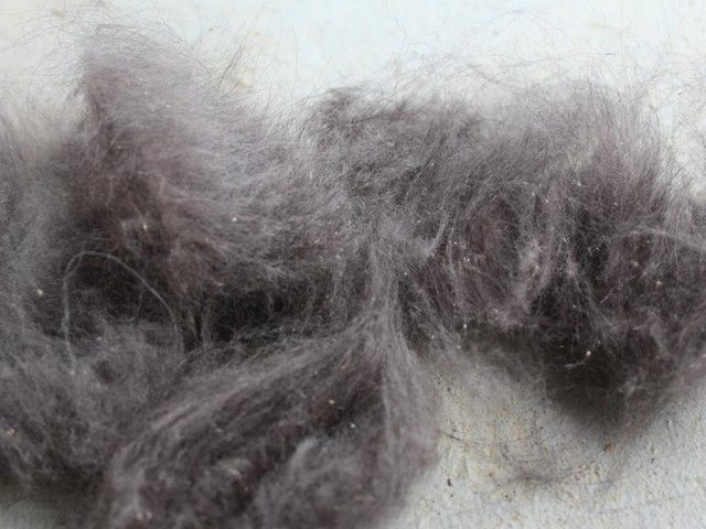dead undercoat removed from sheltie
